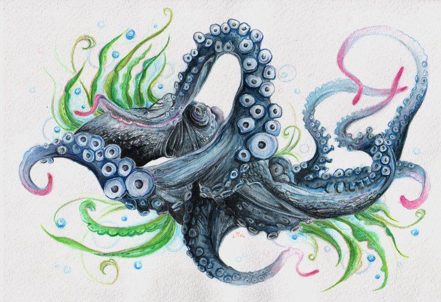 Octopus by ~Gebefreniya on deviantART