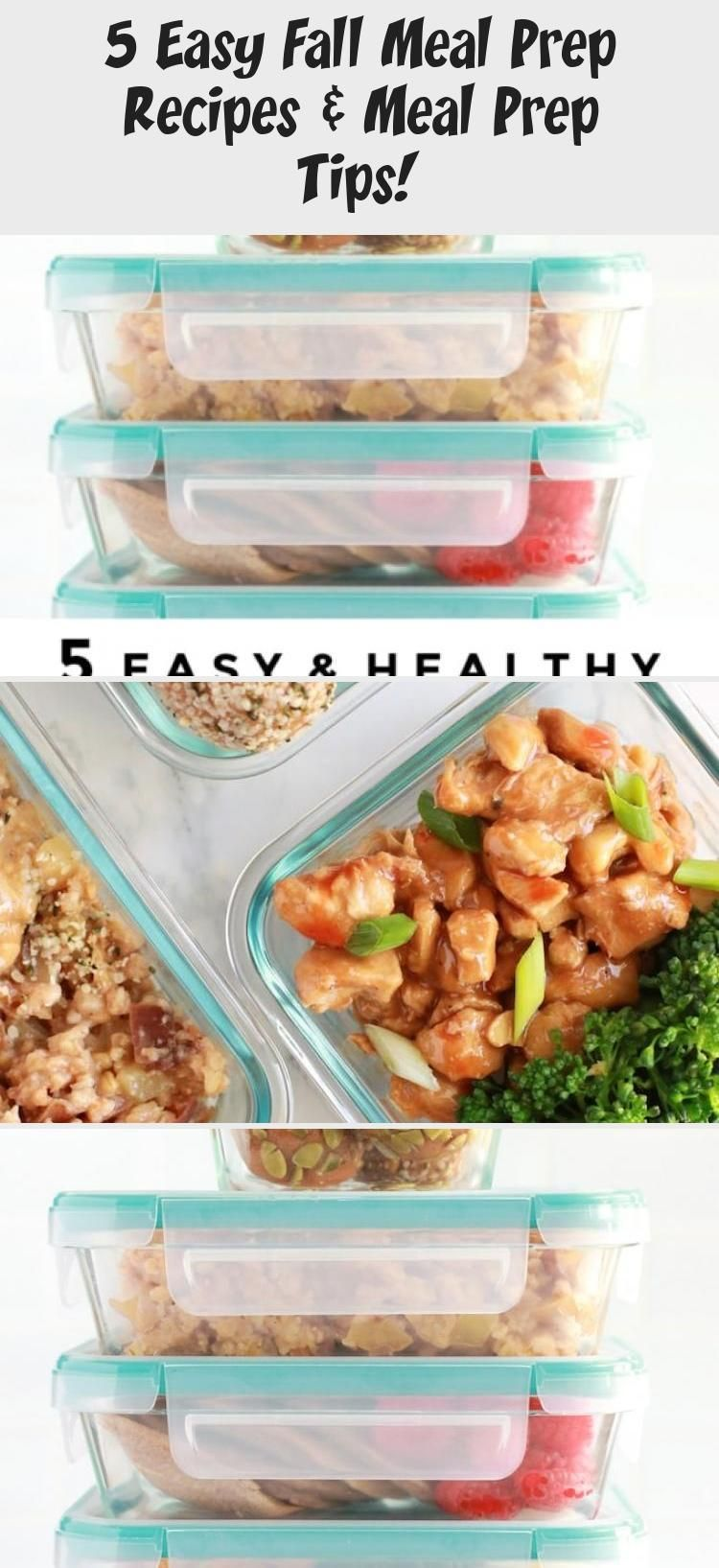 5 Easy Fall Meal Prep Recipes Healthy For Beginners Gluten Free Dairy Free tritioninth Every meal is important for nutrition but lunch It is more valuable for those who a...