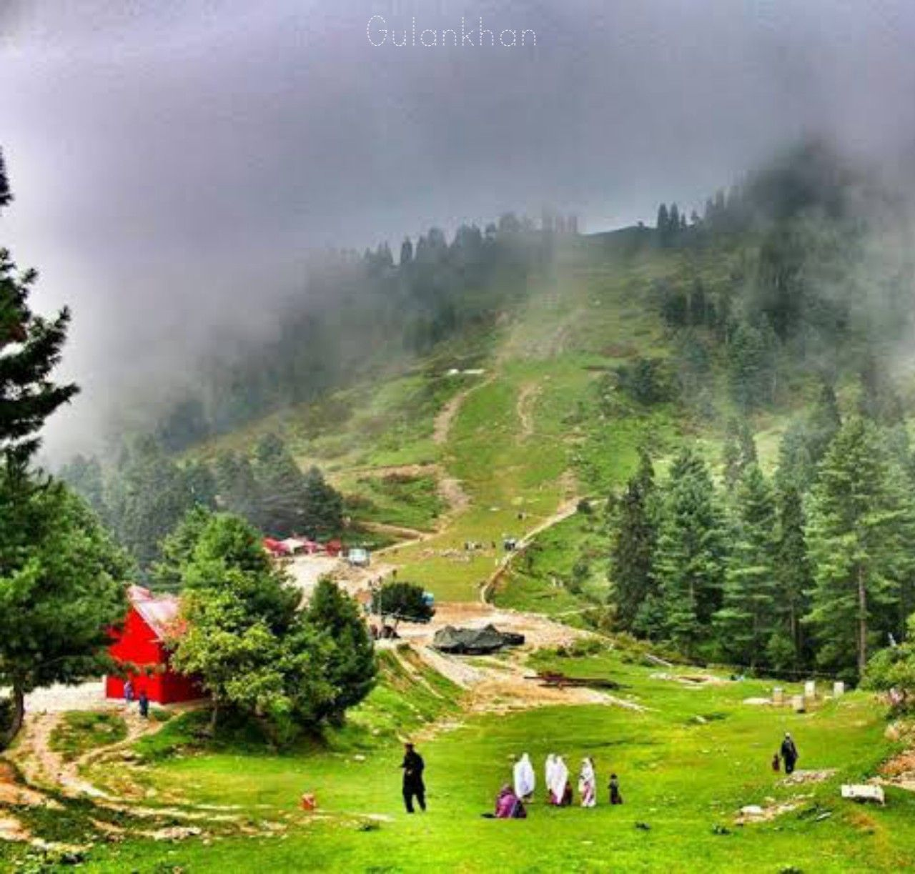 Brilliant beauty wonderful greenish view of beautiful Swat