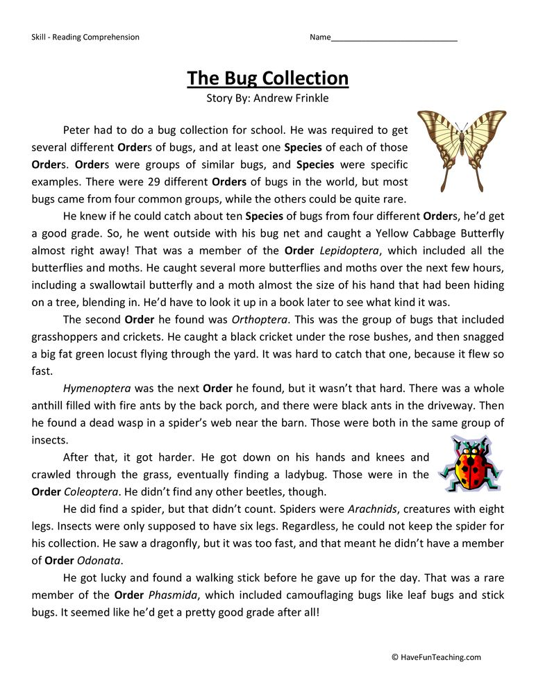Bug Collection Fifth Grade Reading Comprehension Worksheet | reading ...