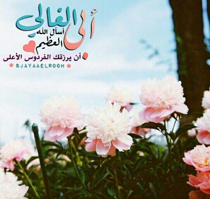 ابي الغالي Love Dad Meaningful Words Quran Verses