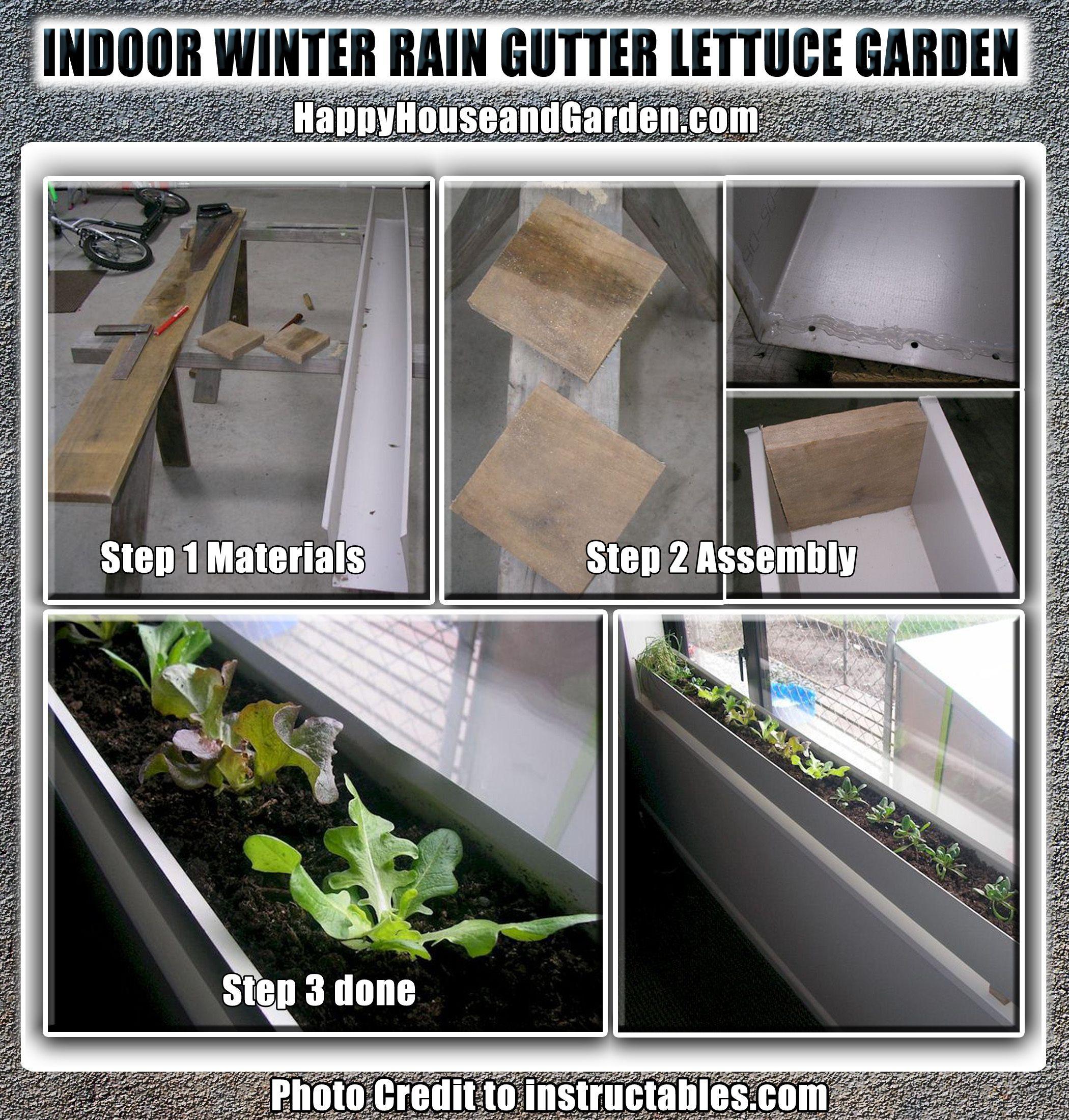 Indoor Winter Rain Gutter Lettuce Garden | Happy House And Garden Social  Site