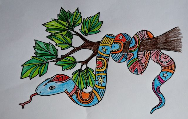 Twinkl Mindfulness Colouring Pages Mindfulness Colouring Snake Coloring Pages Expressive Art