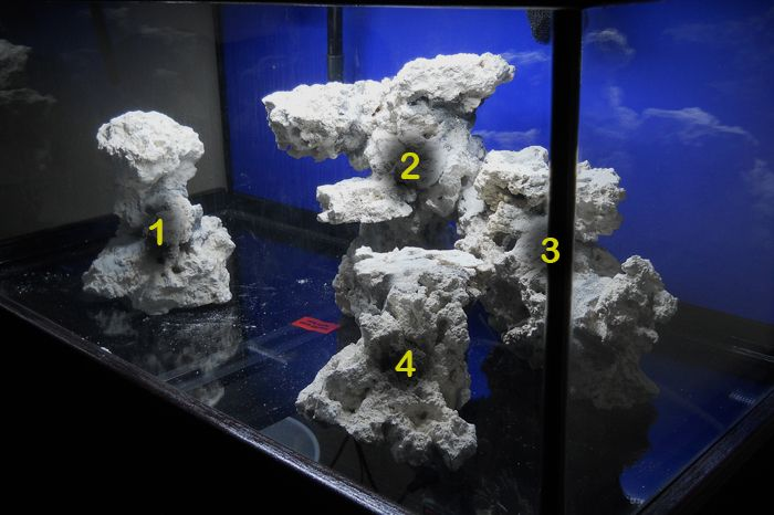 Minimalist Aquascaping - Page 76 - Reef Central Online ...