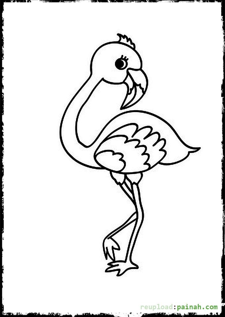 baby bird flamingo coloring pages - Flamingo Coloring Pages