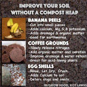 gardening/improvesoilcompost.jpg