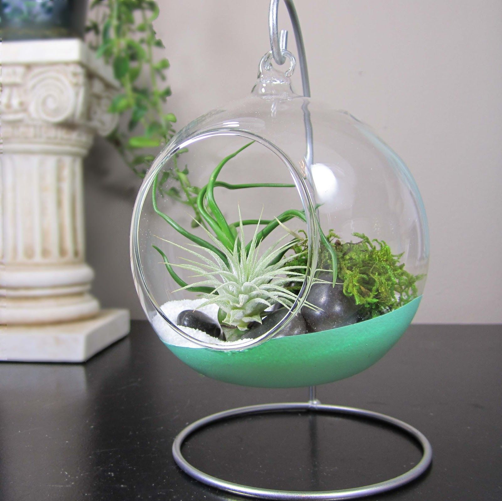 HANGING GLASS TERRARIUMS 'dipped' in paint with air plants, beach sand and  moss