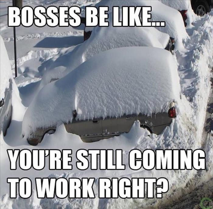 Funny Pictures Of The Day 28 Pics Funny Friday Memes Funny Pictures Snow Meme