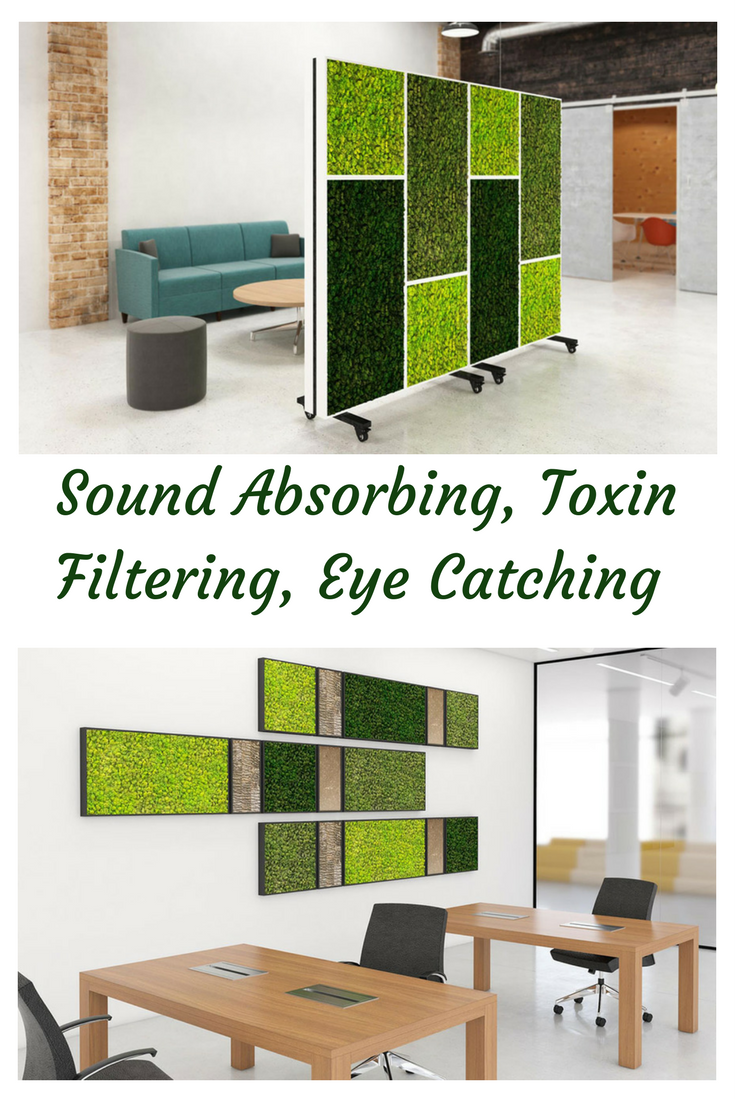 Moss These Mobile Dividers Provide Sound Absorbing Toxin Filtering With The Preserved Moss Art They Office Dividers Open Office Design Open Concept Office