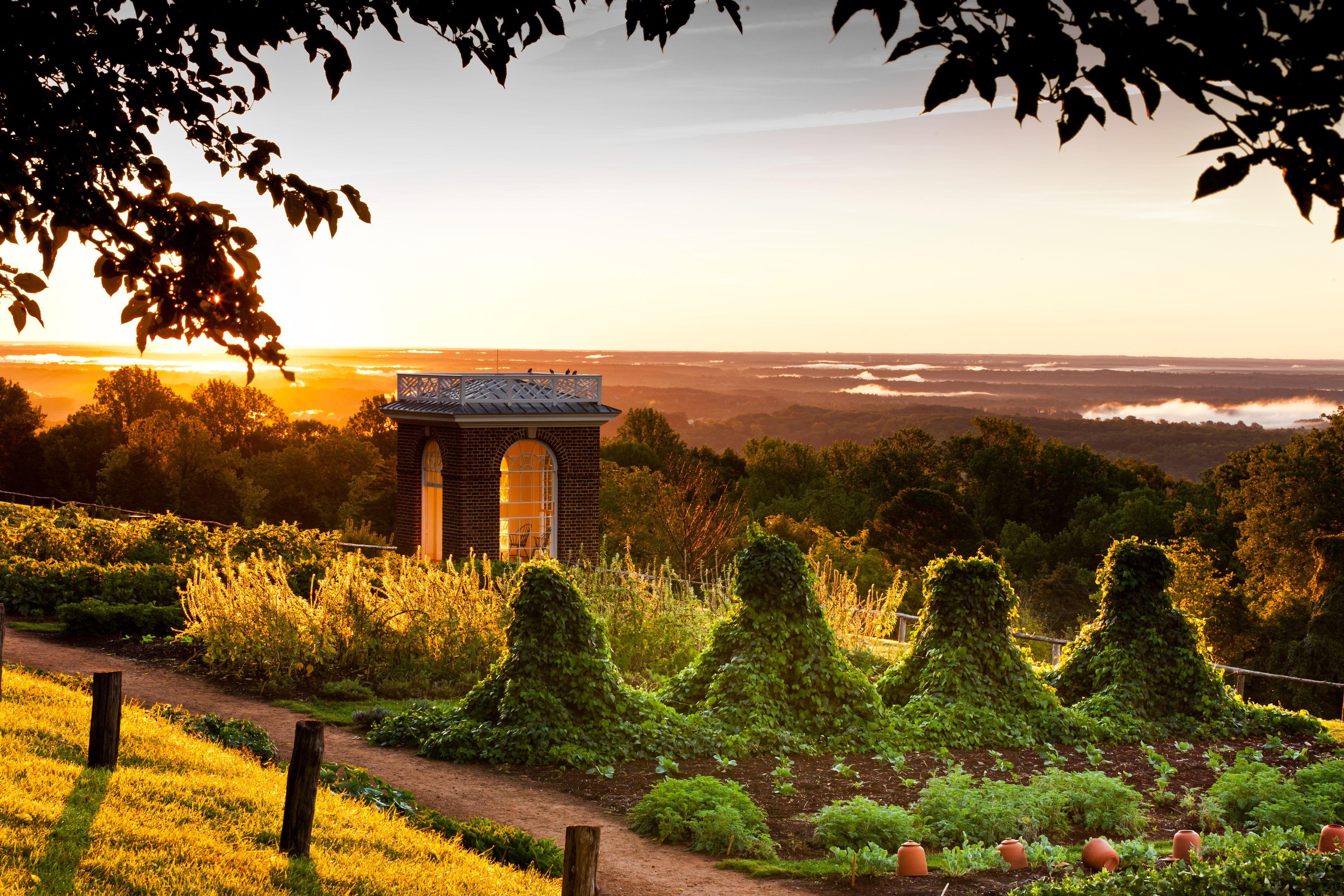 Monticello Garden Terrace Sunset   Gardens   Pinterest   Gardens