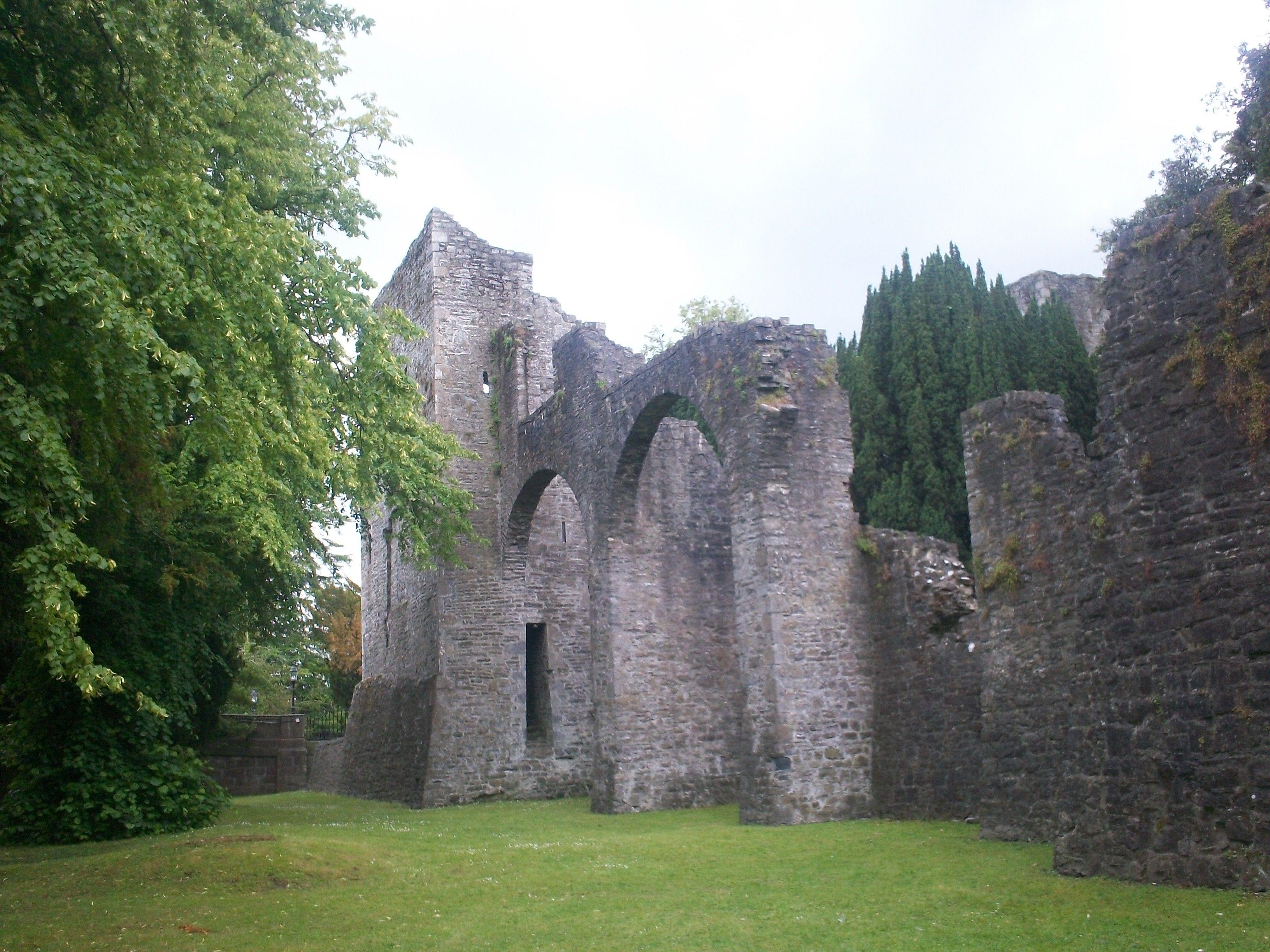 Ruines Du Chateau De Maynooth Irlande Ireland Scotland