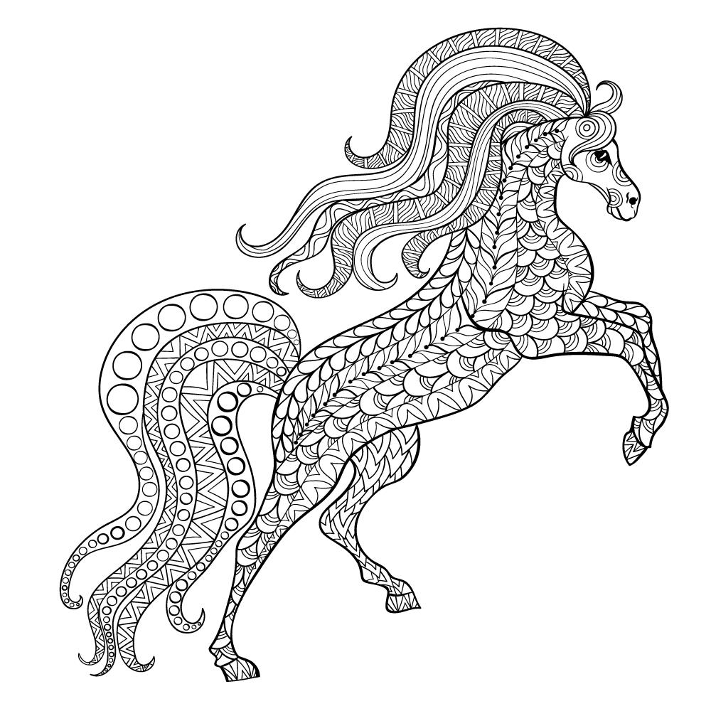 Passe O Tempo Colorindo Este Cavalo Que Exibe Toda A Sua Beleza Ao Tentar Ficar Em