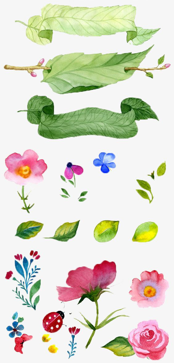Photo of Hand Painted Flowers, Watercolor, Plant, Small Fresh PNG Transparent Clipart Image and PSD File for Free Download