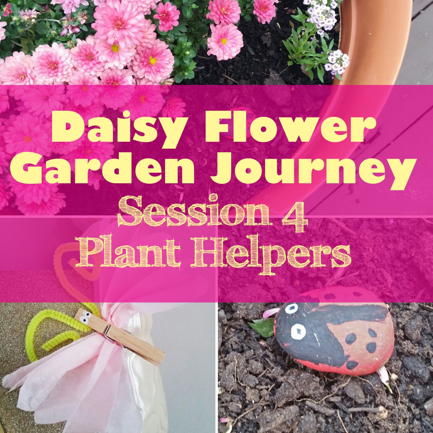 Daisy Flower Garden Journey Session 4 Plant Helpers 3 Wittle