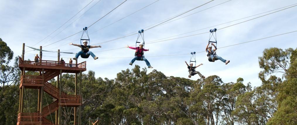 Piiholo Ranch Zipline Maui Zipline Ziplining Canopy Tours Ziplining In Maui Zipline Adventure Ziplining