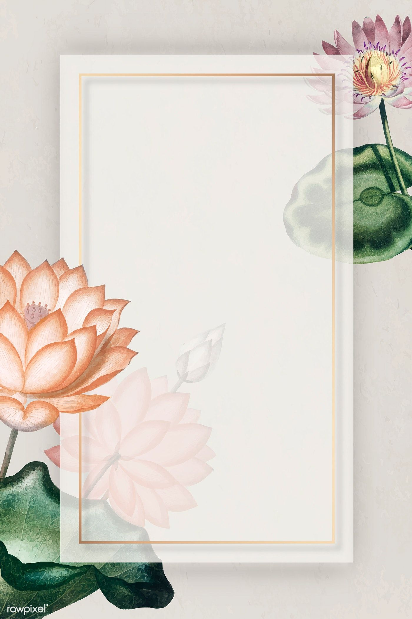 Download premium vector of Blank colorful water lilies