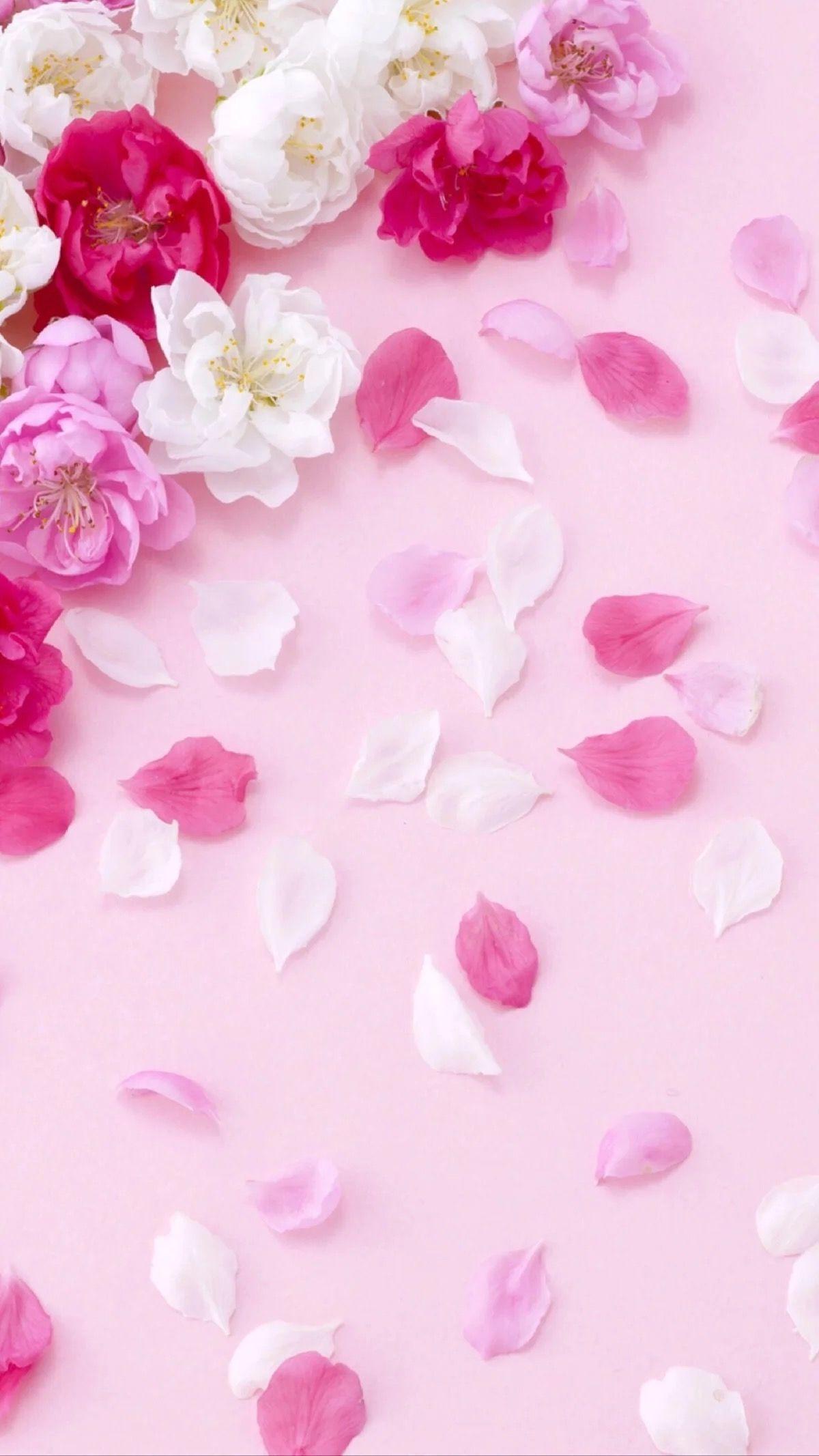 ورق جدران بواسطة الفنان غير معروف خلفيات ورود جميلة جدا الفنان بواسطة جدا جدرا Flower Phone Wallpaper Flower Background Wallpaper Flower Wallpaper