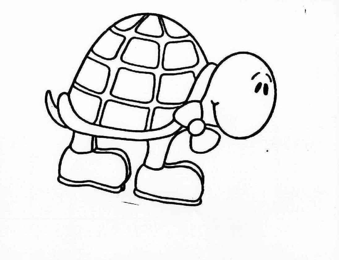 Baby Turtle Coloring Pages Coloring Pages Pictures Imagixs | Home ...