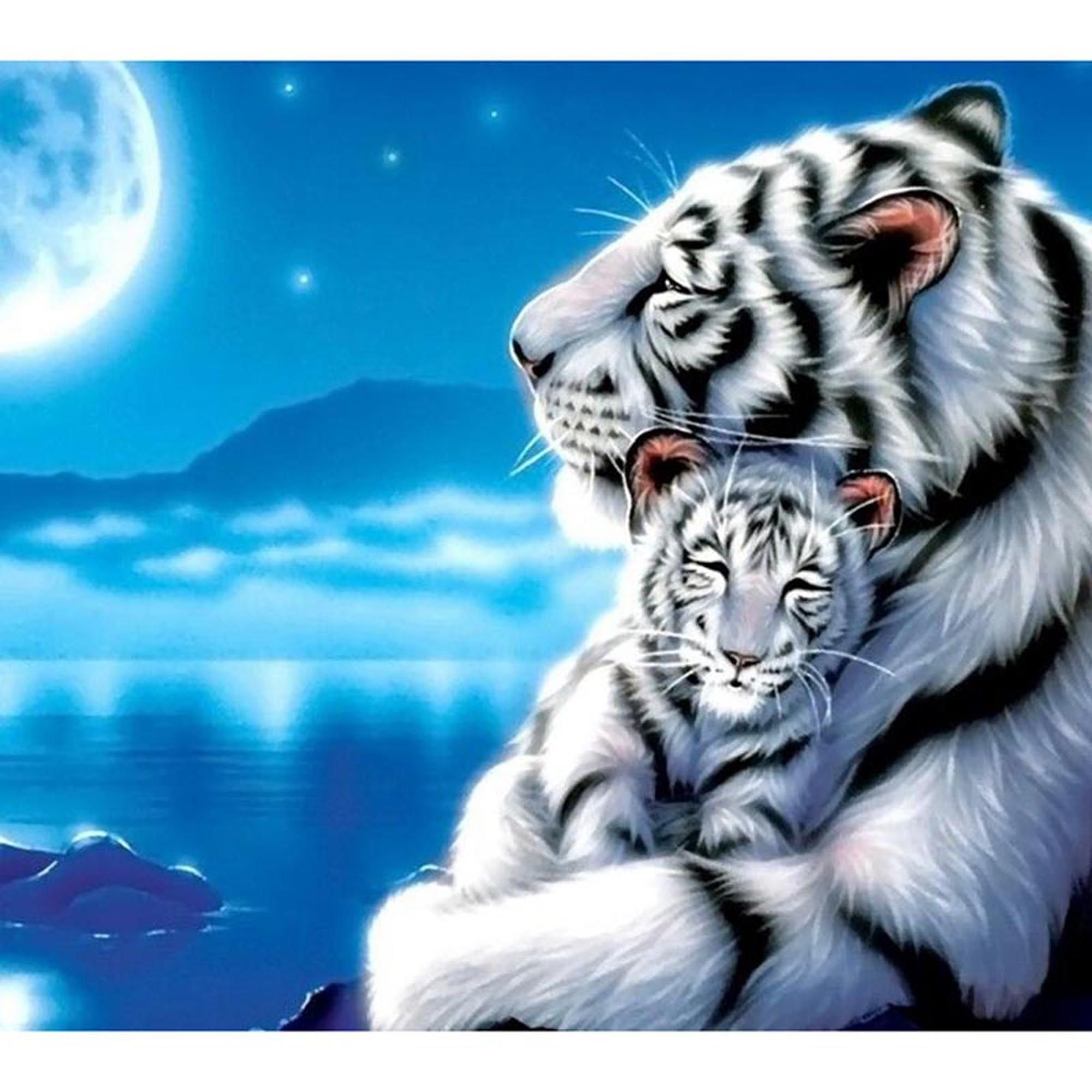 Best 5D Diy Diamond Painting Tiger Family In Moonlight Full 640 x 480