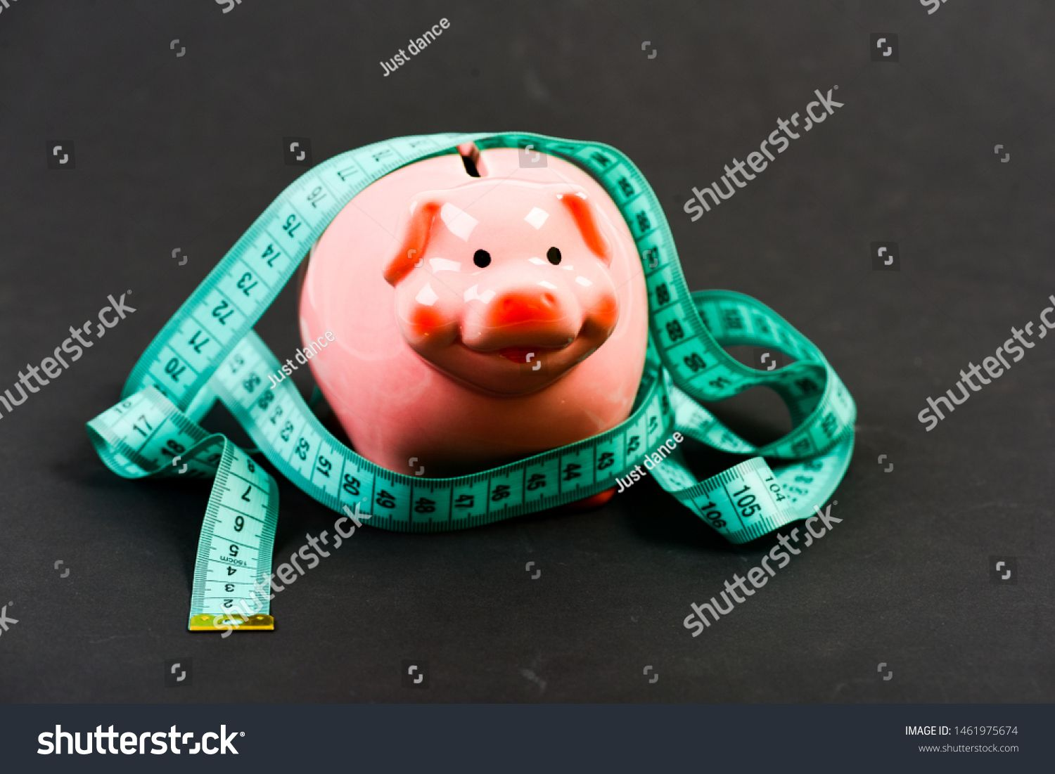 Piggy bank and measuring tape Budget limit concept Financial consulting Economics and finances Pig trap Budget crisis Planning budget Business problem Limited or restrict...