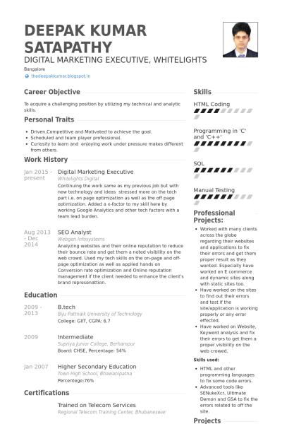 Digital Marketing Resume Resume Sample