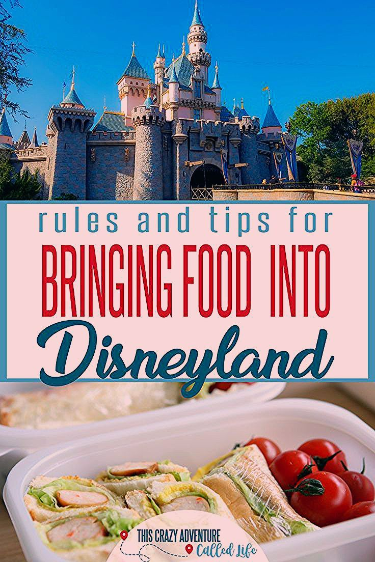 Photo of Thinking Of Taking Food Into Disneyland? Read This First!