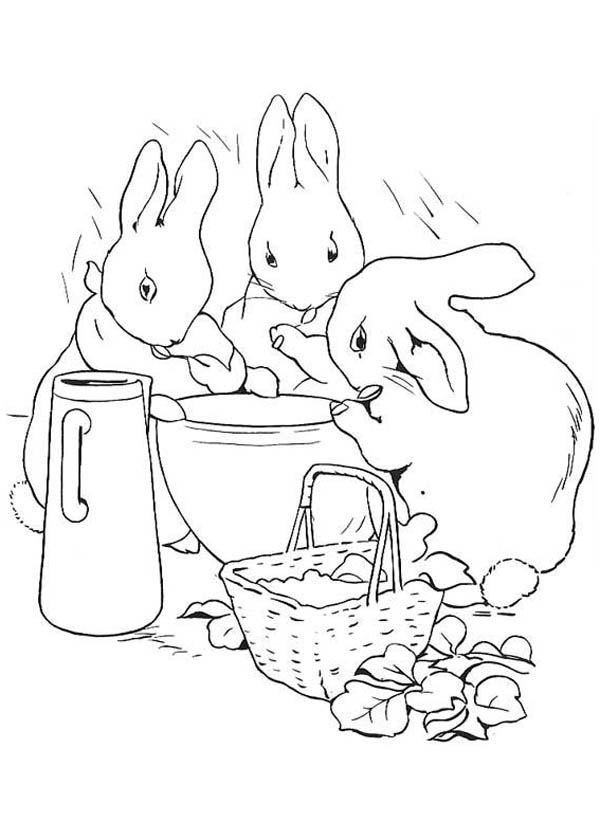 Peter Rabbit Breakfast With His Sisters Coloring Page