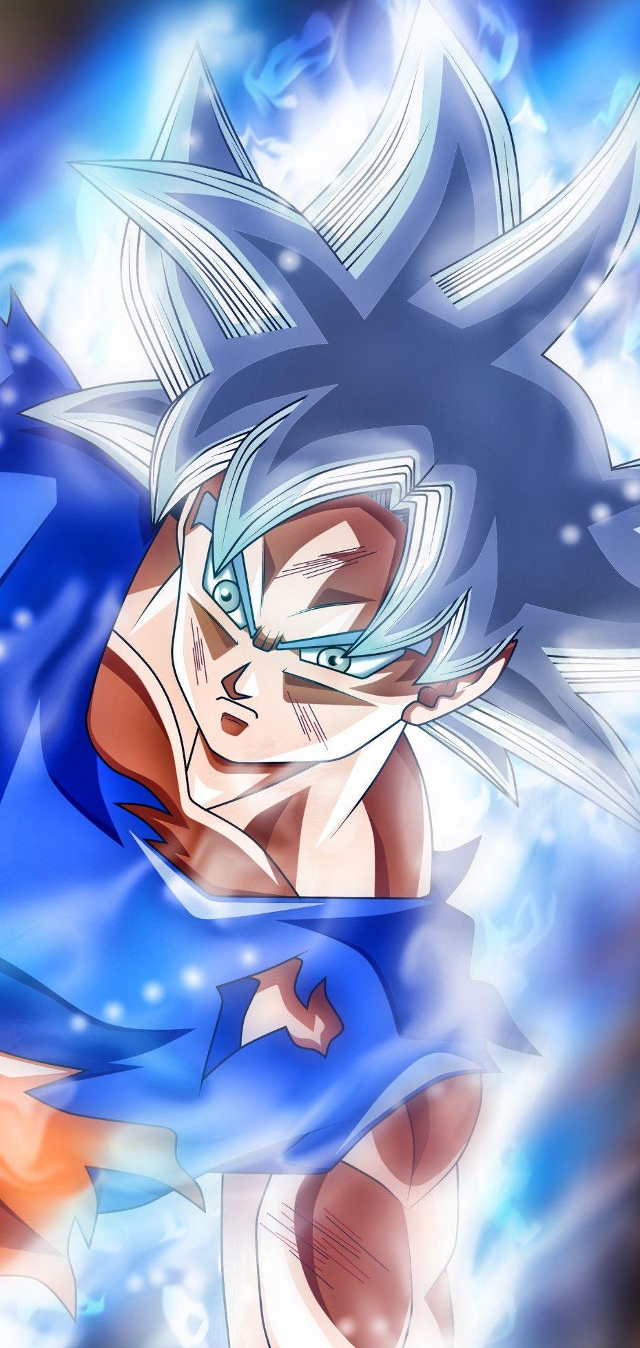 Goku Ultra Instinct Mastered Dragon Ball Super Anime Dragon Ball Super Goku Wallpaper Anime Dragon Ball