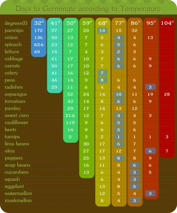 Seeding Starting Chart. It's Good To Know What Can Grow