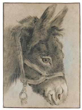 huet jean baptiste study of a donke | animals | sotheby's n09101lot779yren