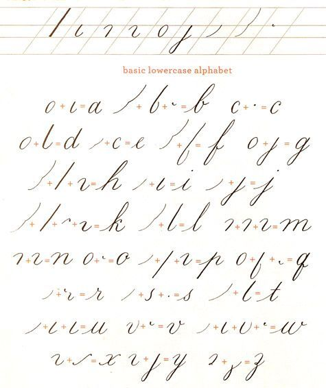 Calligraphy how to flourish and brush lettering