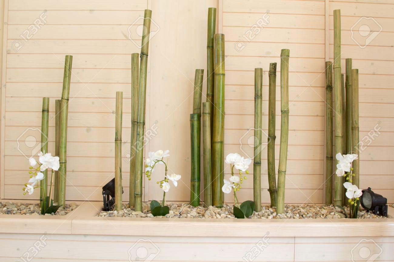 Flores de la orqu dea con la decoraci n de bamb for Plantas salon decoracion