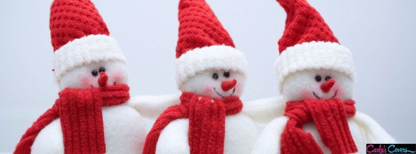Pin by Susie Burr on Christmas Timeline Covers | Christmas ...