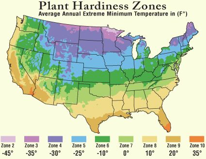 Tree Growing Zones Tree Hardiness Zones Tree Planting Zones Plant Hardiness Zone Map Plant Hardiness Zone Zone 3