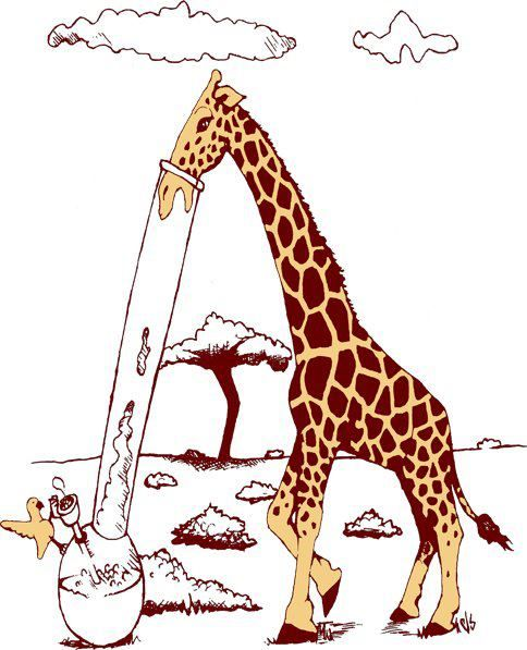 giraffes with bongs so thats how clouds are made