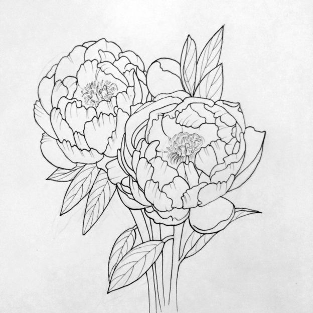 Line Drawing Flower Tattoo : Peonies amanda rodriguez tattoos pinterest peony