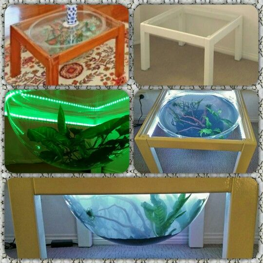 Glass coffee table with led strip lights aquarium display dome glass coffee table with led strip lights aquarium display dome terrarium reptial enclosure mozeypictures Images