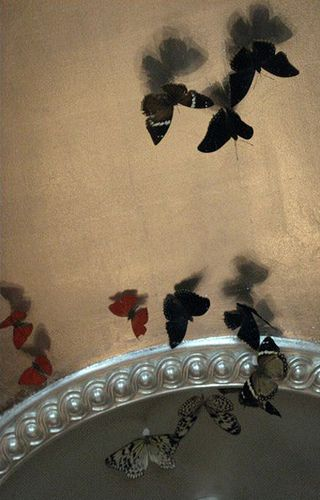 butterflies on the ceiling by {this is glamorous}