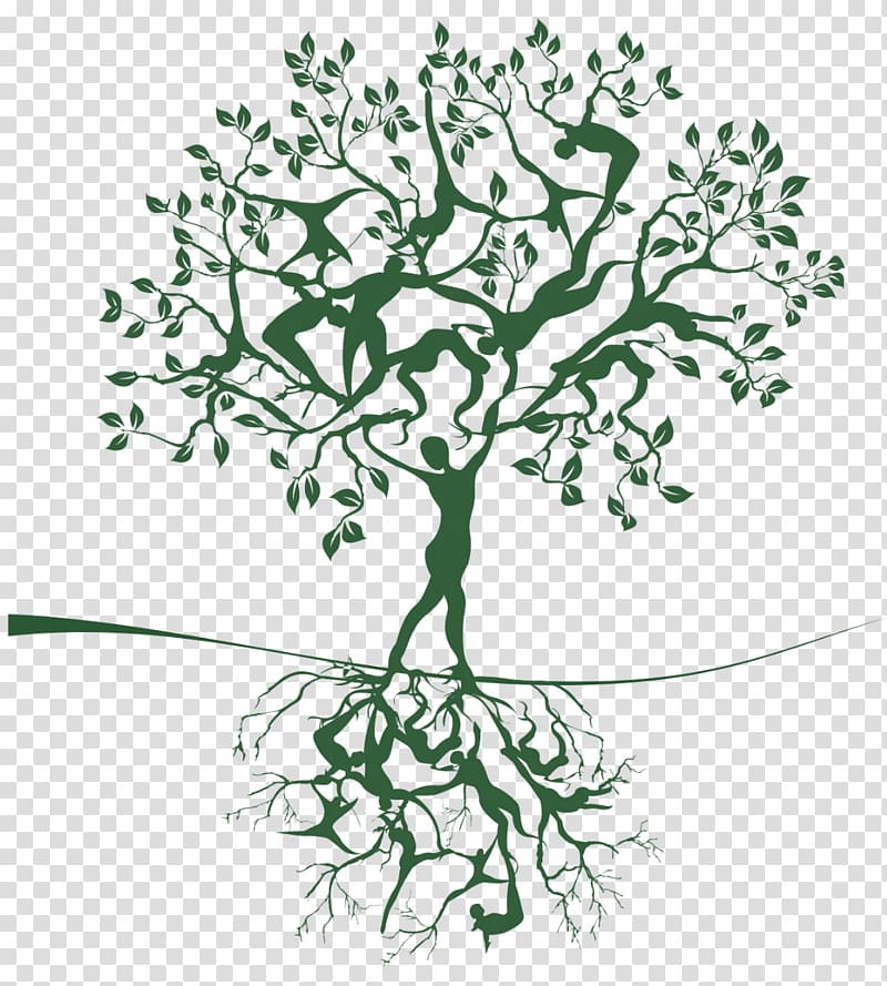 Tree Of Life Woman Tree Transparent Background Png Clipart Cherry Blossoms Illustration Tree Illustration Tree Trunk Drawing