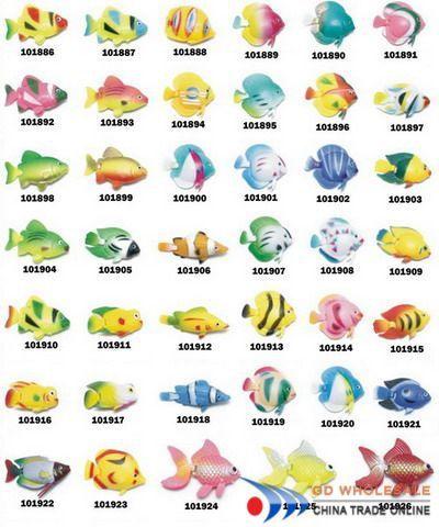 Aquarium Fish With Name Names