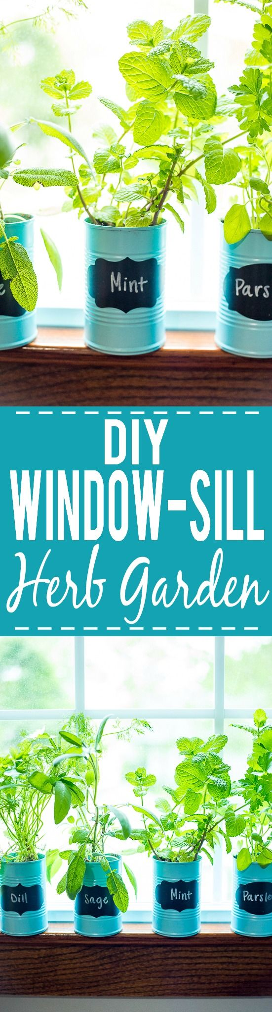 Indoor Window Sill Herb Planter Part - 40: How To Make A DIY Indoor Window Sill Herb Garden - Save Money, Prevent Food