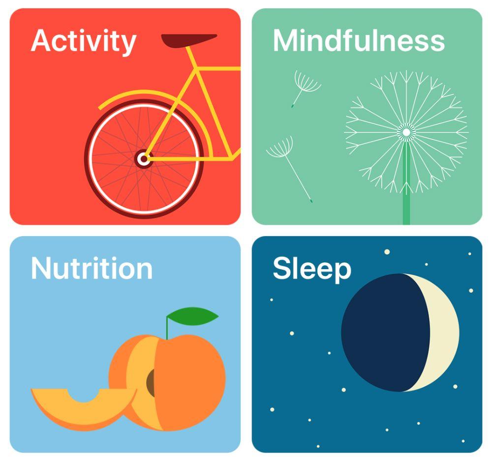 HealthKit Apple Developer in 2020 Healthkit, Health