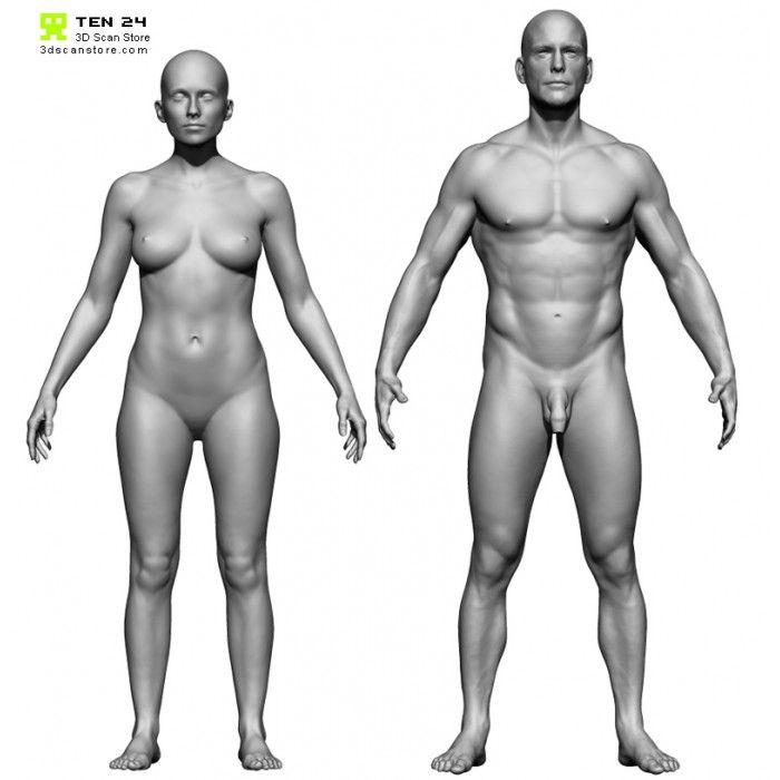 1 700x700 Jpg 700 700 Pixels Female Base Body Study Body Scanning