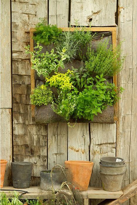 Pretty vertical planter at Terrain