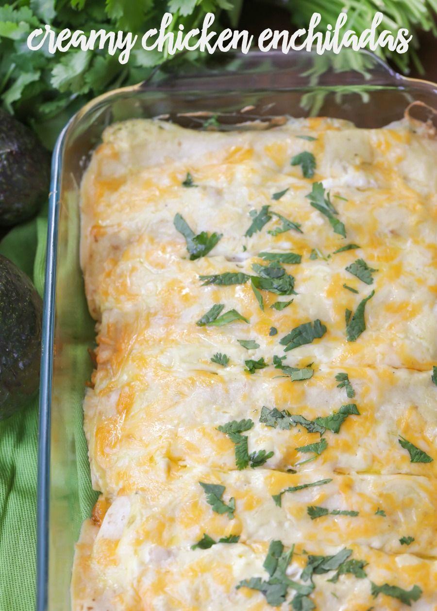 Creamy Chicken Enchiladas With Sour Cream Video Lil Luna Recipe Chicken Enchiladas Enchilada Recipes Creamy Chicken Enchiladas Recipe