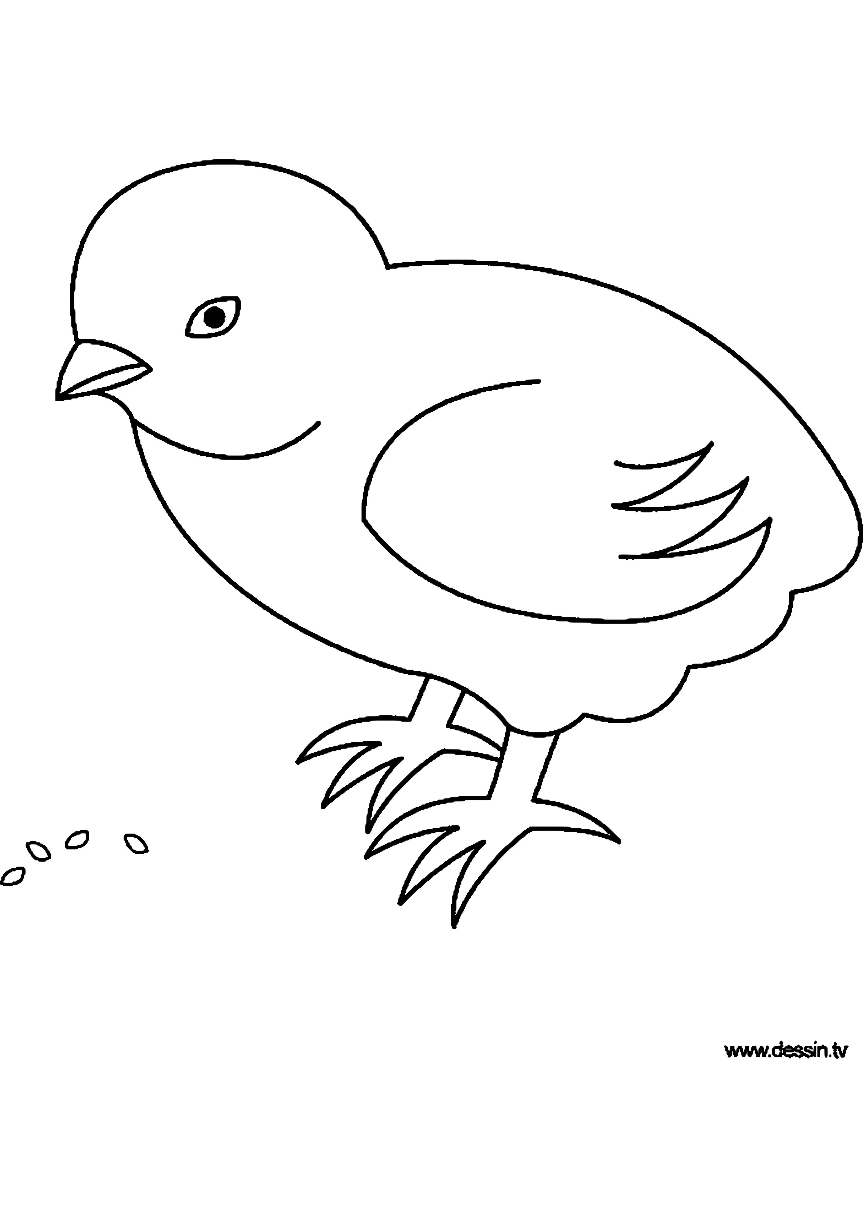 Bemerkenswert Vogel Ausmalbild Ideen Von Pin Von Anke Auf Malvorlagen | Inspiration