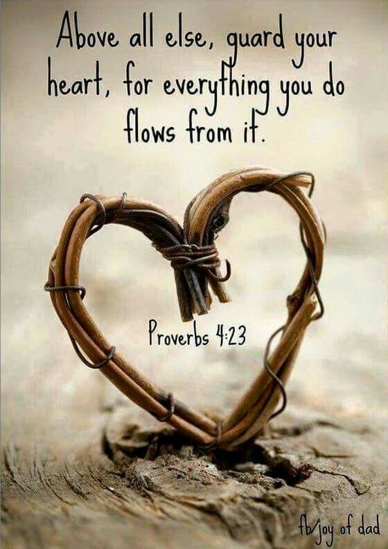 Bible Love Quotes Ad997A14Fdac91Ba680A0941Bdb098Eb 560×792 Pixels  Sun Flowers