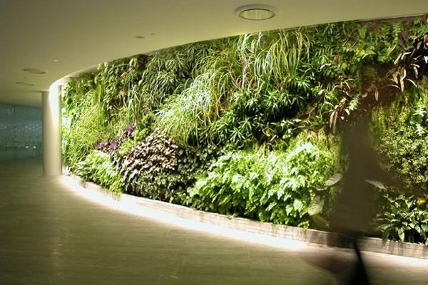 Point Of View Rozelle Lighting Designers Green Facade