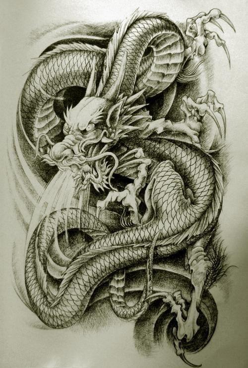 Pin By Fendi Maulana On Tattoos Dragon Tattoo Styles Dragon Tattoo Japanese Dragon Tattoos