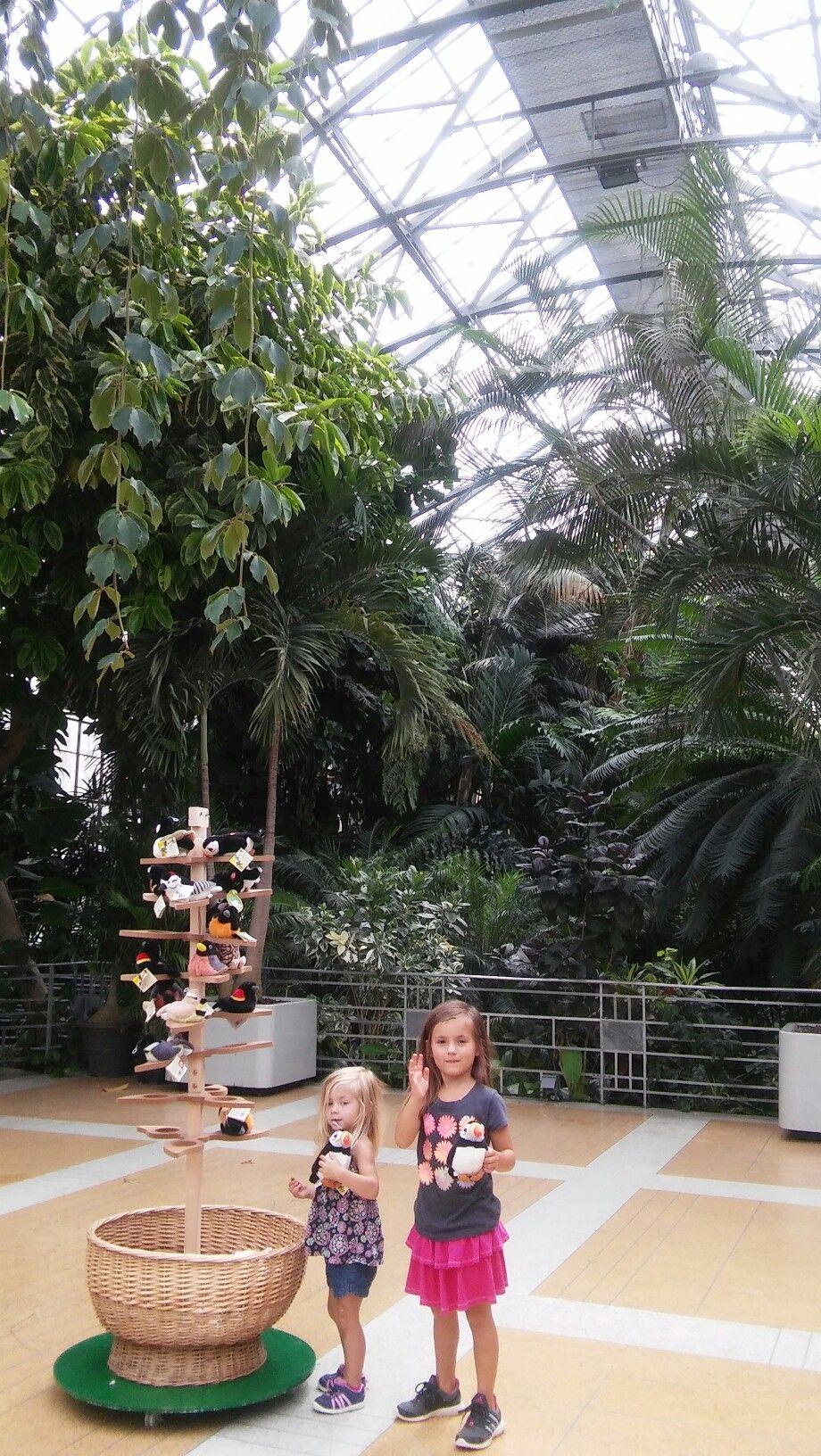 Beautiful Krohn Conservatory. Eden Park, Cincinnati Ohio